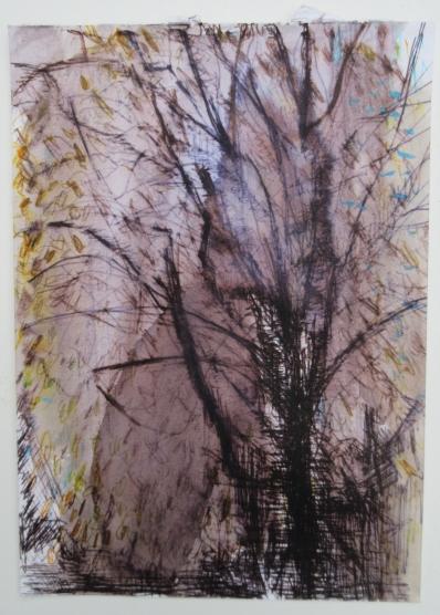 Tree, 2017